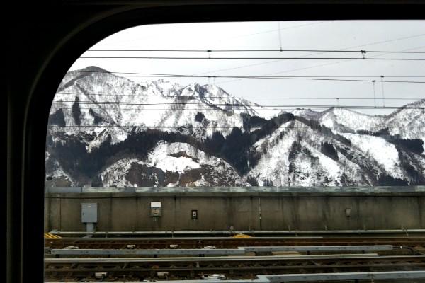 トンネルを抜けるとそこは雪国、豆柴ニコと冬真っ只中の新潟に行ってきました