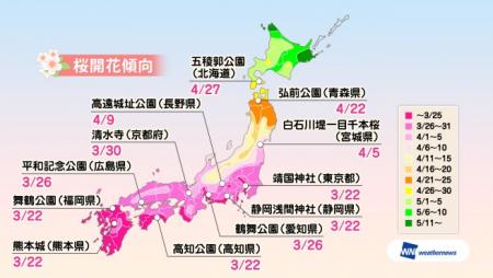 2017 0217 桜